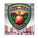 napa-cricket-logo