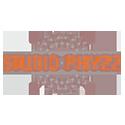 studio-phyzz-logo